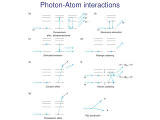 Photon-Atom interactions
