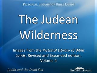 The Judean Wilderness
