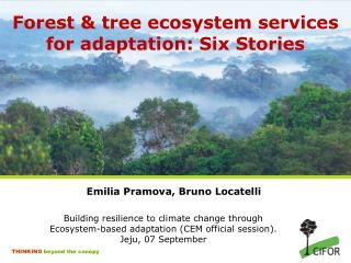Forest & tree ecosystem services for adaptation: Six Stories