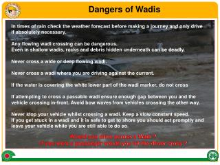 Would you drive across a Wadi ?  If you were a passenger would you let the driver cross ?
