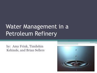 Water Management in a Petroleum Refinery