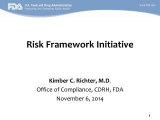Risk Framework Initiative