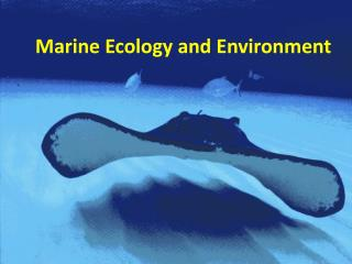 Marine Ecology and Environment