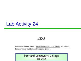Lab Activity 24