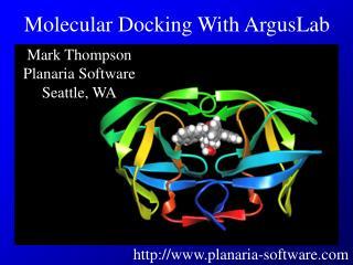 Mark Thompson Planaria Software Seattle, WA