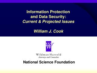 Information Protection  and Data Security:  Current & Projected Issues William J. Cook