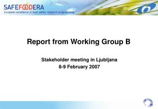 Report from Working Group B