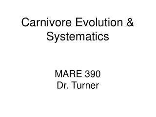 Carnivore Evolution & Systematics MARE 390 Dr. Turner