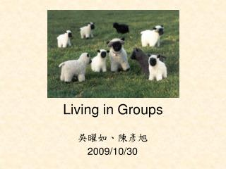 Living in Groups