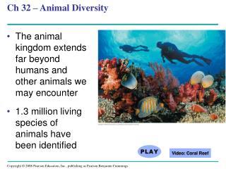 Ch 32 – Animal Diversity