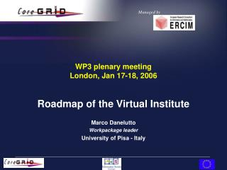 WP3 plenary meeting London, Jan 17-18, 2006