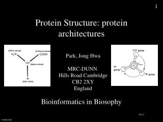 Protein Structure: protein architectures
