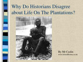 Why Do Historians Disagree about Life On The Plantations?