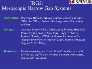 IRG2:  Mesoscopic Narrow Gap Systems