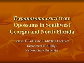 Trypanosoma cruzi  from Opossums in Southwest Georgia and North Florida