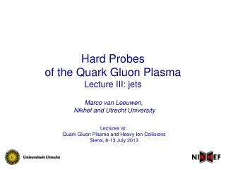 Hard Probes of the Quark Gluon Plasma Lecture III: jets