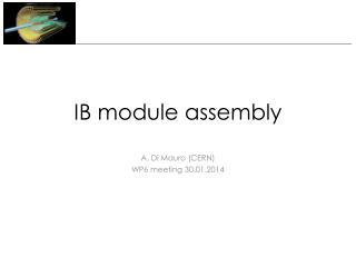 IB module assembly