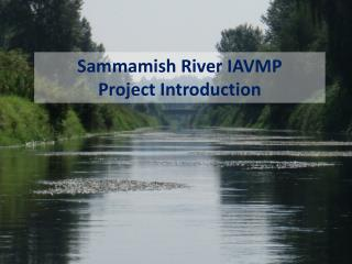 Sammamish River IAVMP Project Introduction