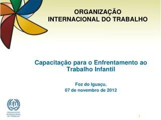 Capacitação para o Enfrentamento ao Trabalho Infantil Foz do Iguaçu, 07 de novembro de 2012