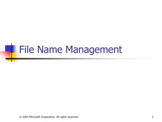 File Name Management