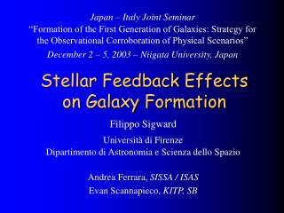 Stellar Feedback Effects on Galaxy Formation