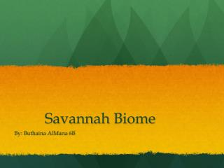Savannah Biome