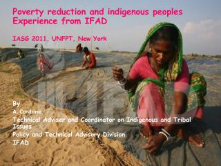Poverty reduction and indigenous peoples Experience from IFAD  IASG 2011, UNFPT, New York         By  A. Cordone Technic