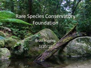 Rare Species Conservatory Foundation