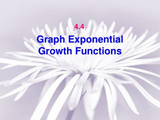 Graph Exponential  Growth Functions