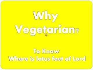 Why Veg