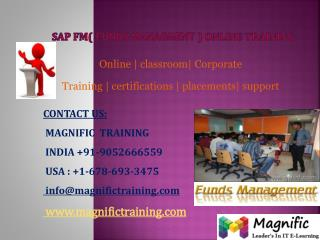 SAP TESTING ONLINE TRAINING IN USA
