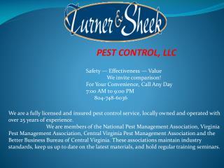 Pest Control Chester VA, Pest Control Chesterfield VA, Termi