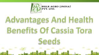 Advantages And Health Benefits Of Cassia Tora Seeds