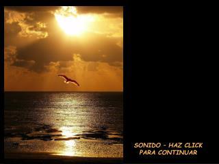 SONIDO – HAZ CLICK PARA CONTINUAR