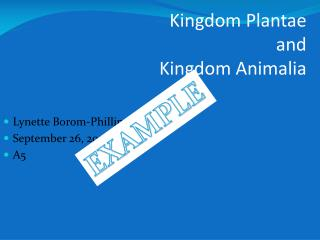 Kingdom Plantae  and  Kingdom Animalia