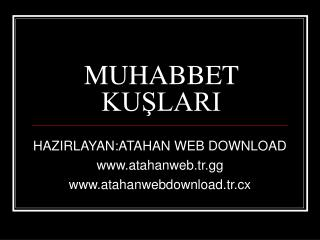 MUHABBET KUŞLARI