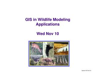 GIS in Wildlife Modeling Applications Wed Nov 10