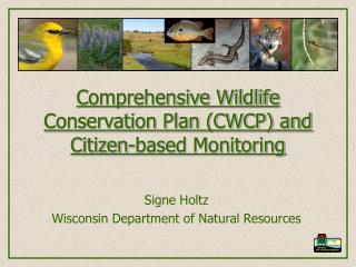 Comprehensive Wildlife Conservation Plan (CWCP) and Citizen-based Monitoring