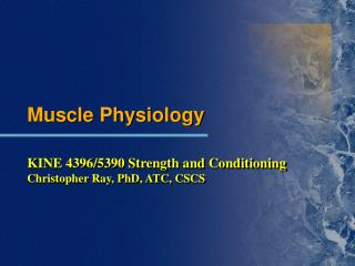Muscle Physiology KINE 4396/5390 Strength and Conditioning Christopher Ray, PhD, ATC, CSCS
