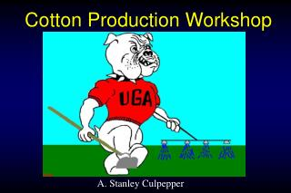 Cotton Production Workshop