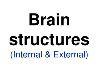 Brain structures (Internal & External)
