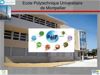 Ecole  Polytechnique Universitaire  de Montpellier