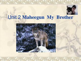 Unit 2 Maheegun My Brother