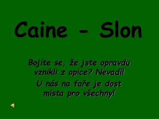 Caine - Slon