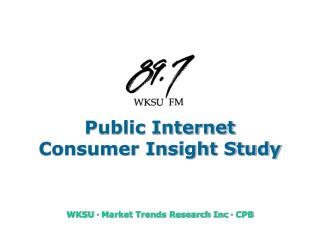 Public Internet Consumer Insight Study