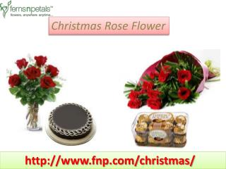 Buy Online Exclusive Christmas Gifts