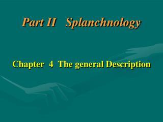 Part II Splanchnology Chapter 4 The general Description