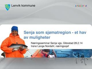 Næringsseminar Senja vgs, Gibostad 28.2.14 Irene Lange Nordahl, næringssjef