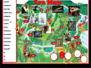 1.panda 2.elephant 3.Sea lion 4.Polar bear 5.alligator 6mel 7.zebra 8.frog 9.kangroo
