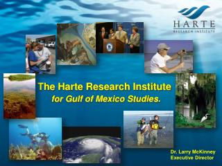 The Harte Research Institute for Gulf of Mexico Studies.
